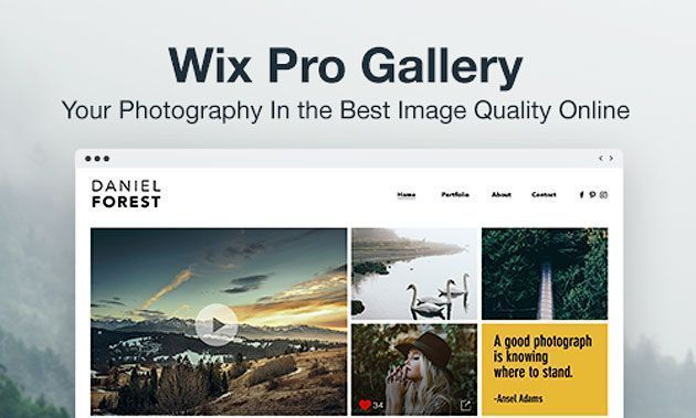 Приложение Wix Pro Gallery