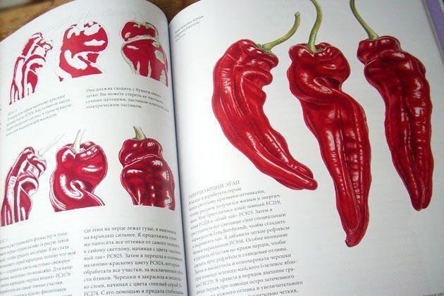 «Ботаническая иллюстрация цветными карандашами» – Энн Свон